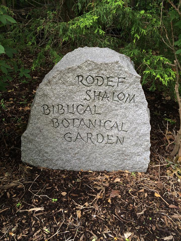Rodef Shalom Biblical Botanical Garden Visit The Biblical Lands Right On Fifth Avenue In