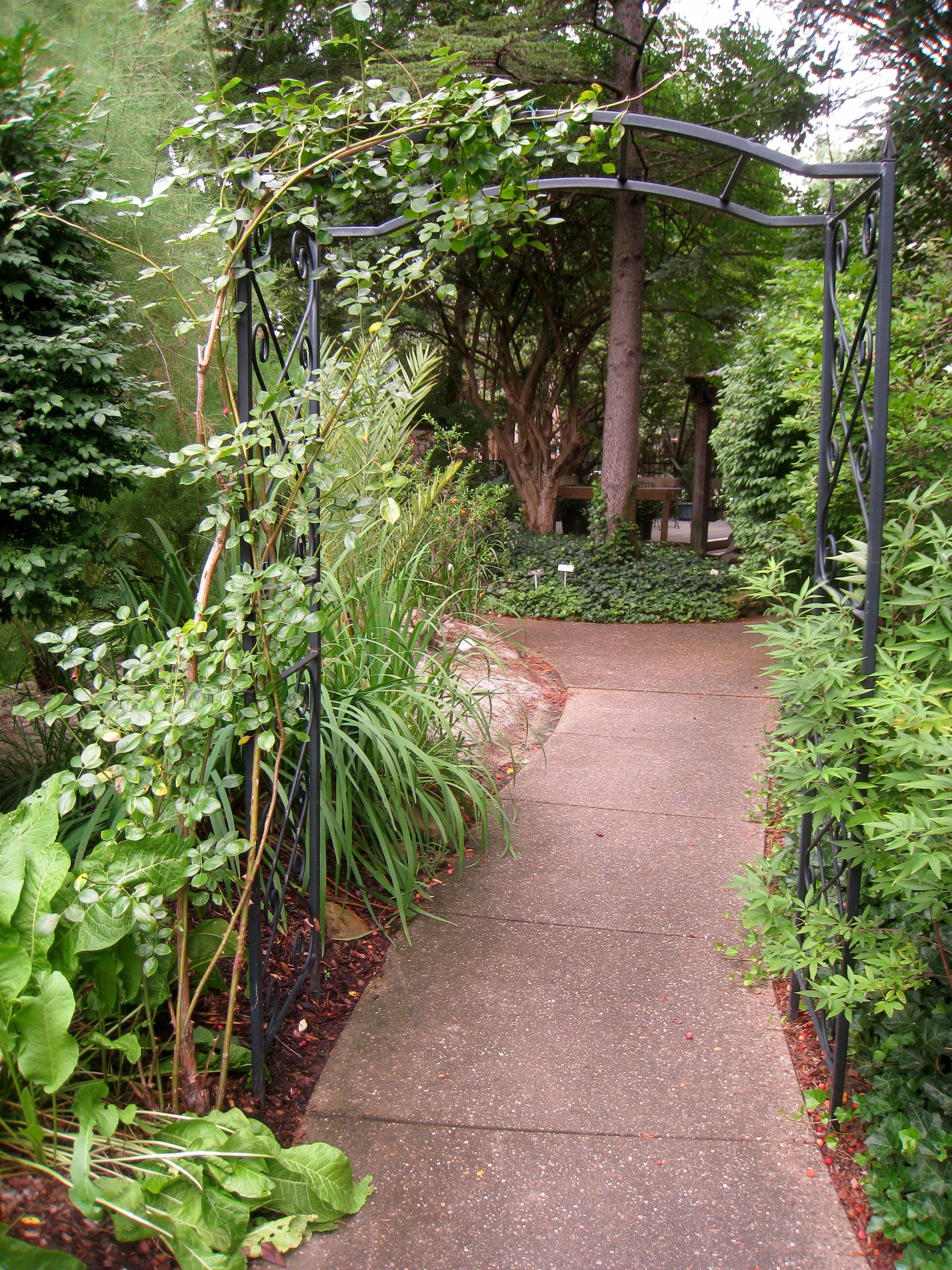 About Us Rodef Shalom Biblical Botanical Garden
